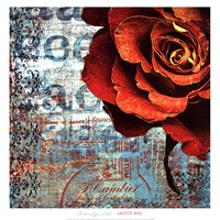 Graffiti Rose Fine Art Print