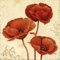 "Poppy Bouquet II by Daphne Brissonnet - 12"" x 12"""