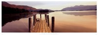 "Still by Peter Adams - 37"" x 14"" - $21.99"