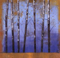 "Birch Trees II by Cheryl Martin - 24"" x 24"""