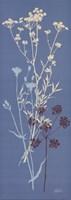 Teal Meadow Flower Fine Art Print