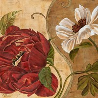 Floral Aura II Fine Art Print