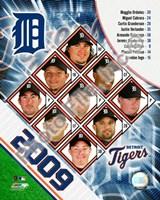 """2009 Tigers Composite, 2009 - 8"""" x 10"""", FulcrumGallery.com brand"""