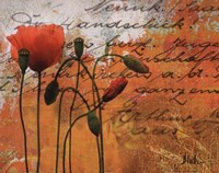 """Poppies Composition I by Patricia Pinto - 20"""" x 16"""""""