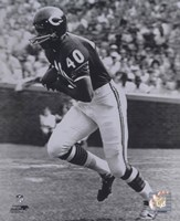 Gale Sayers - Running Fine Art Print
