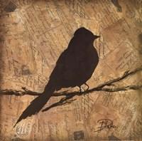 """Bird Silhouette I by Patricia Pinto - 16"""" x 16"""""""