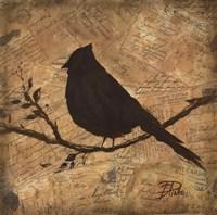 "Bird Silhouette II by Patricia Pinto - 16"" x 16"""