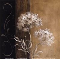 Delicate Beauty I Framed Print