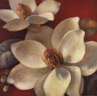 Magnolia Passion I Fine Art Print
