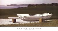 Oyster Catcher Fine Art Print
