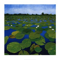 "Waterlilies by Alexander Hamawi - 28"" x 28"""
