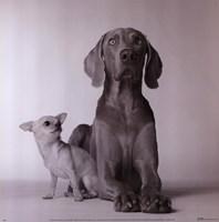 Max & Roxie Fine Art Print
