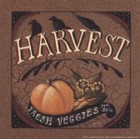 """Harvest - 6"""" x 6"""" - $9.49"""