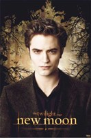 Twilight 2: New Moon (Edward promo) Fine Art Print