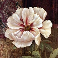 Esperance Peony - mini Fine Art Print