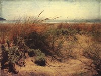 Sand Dunes I Framed Print