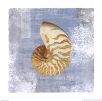 "Listen to the Sea by Wild Apple Studio - 12"" x 12"""