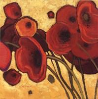 Poppies Wildly I Fine Art Print