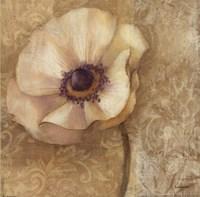 """Brocade Poppy by Albena Hristova - 12"""" x 12"""""""