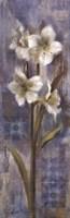 Early Spring II Framed Print