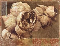 "28"" x 22"" Rose Pictures"
