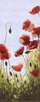 "Mountain Poppies II by Shirley Novak - 8"" x 20"""