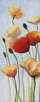 """Just Being Poppies II by Shirley Novak - 8"""" x 20"""""""