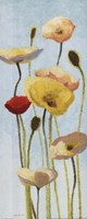 """Just Being Poppies III by Shirley Novak - 8"""" x 20"""""""