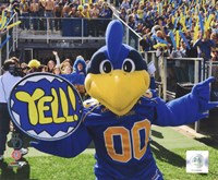 "YoUDee Mascot of the University of Delaware Blue Hens, 2008, 2008 - 10"" x 8"""