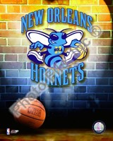 New Orleans Hornets Team Logo