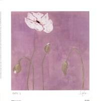 Poppy l Fine Art Print