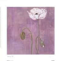 Poppy lll Fine Art Print