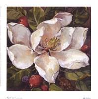 Magnolia Square ll Fine Art Print