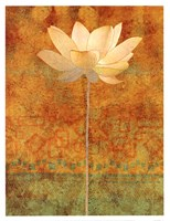 Abstract Lotus I Fine Art Print
