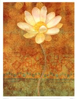 Abstract Lotus II Fine Art Print
