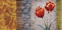 "Floral II by Tandi Venter - 30"" x 15"""