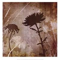 Floral B Fine Art Print