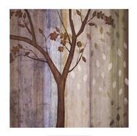 "Changing Seasons II by Tandi Venter - 26"" x 26"" - $30.99"
