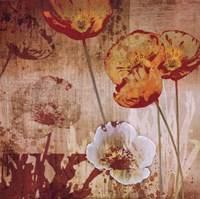 """Small Floral Prints 2 by Tandi Venter - 12"""" x 12"""""""