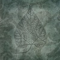 Leaves of Spring Fine Art Print