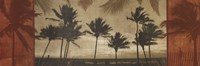 "Sunlit Palms I by Harold Silverman - 36"" x 12"""