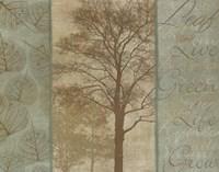 "Natural Elements I by Harold Silverman - 28"" x 22"""