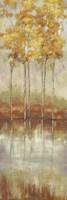 Reflections II Fine Art Print
