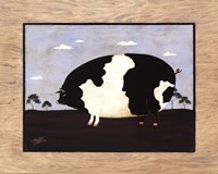 "20"" x 16"" Pig Pictures"