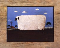 "20"" x 16"" Sheep Pictures"