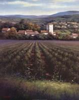 The Vineyard Fine Art Print