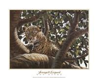 Serengeti Leopard Framed Print