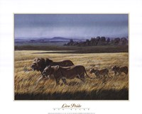 "Lion Pride by Don Balke - 20"" x 16"""