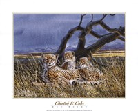 Cheetah and Cubs Fine Art Print