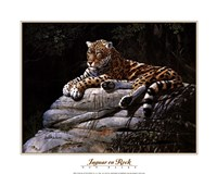 Jaguar on Rock Fine Art Print